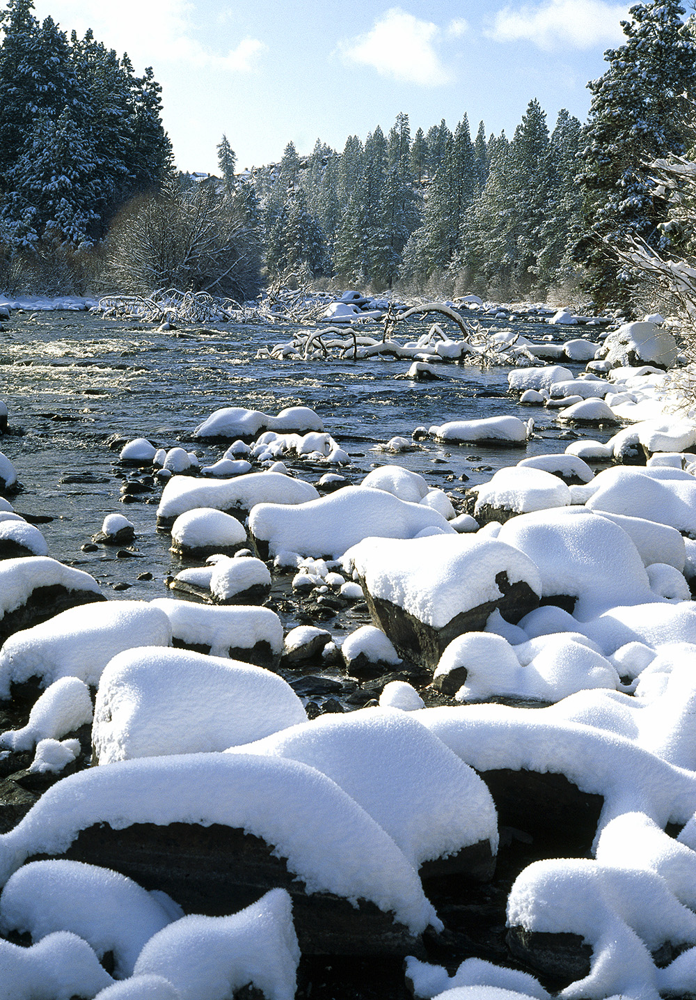 Snowy River Scenery at Mount Bachelor Village