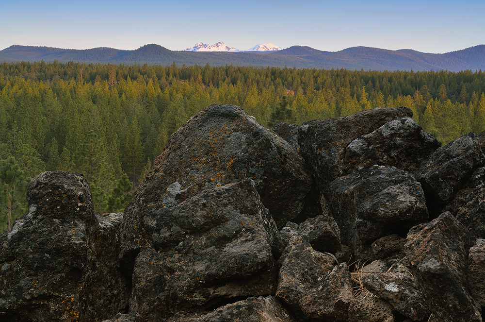 Mountain Views from The Tree Farm